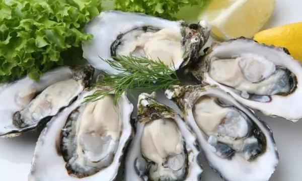 海蛎子的营养价值
