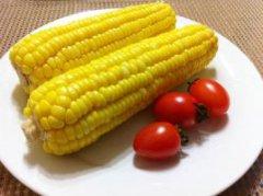 芦洲镇甜玉米