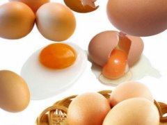 乐道子鸡蛋