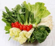 五陂无公害蔬菜