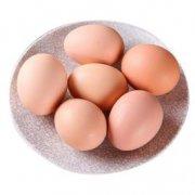 清水粉壳蛋